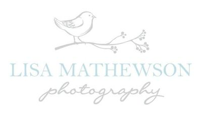 new logo I designed for Lisa Mathewson Photography