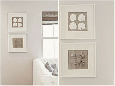 I could frame some of our Sand Dollars for custom art.