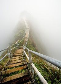 Haiku Trail on Oahu, Hawaii