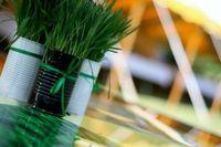 Wheat Grass Centrepieces #weddingdecoration