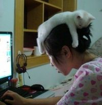 kitty what you doin :D awww