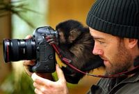 That is the problem these days. Every monkey with an SLR Camera thinks that he is a photographer.