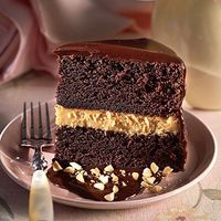 Southern Living Chocolate-Peanut Butter Mousse Cake - Starting with a boxed cake mix makes this cake both easy and delicious. Kids and adults alike will love the creamy peanut butter mousse between layers of chocolate cake. Garnish with chopped roasted pe...