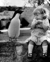 Penguin and his friend, a little laughing girl!