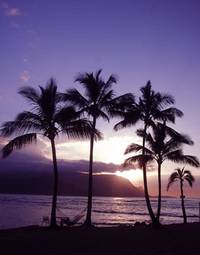 Taking in a Kauai Sunset from the beach at the Princeville Resort from hawaiiw.net